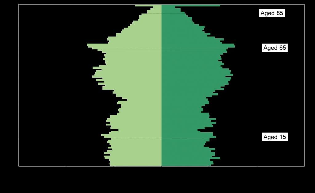 denbighshire-population-pyramid